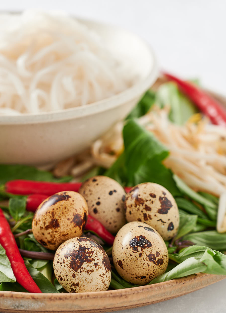 Mottled quail eggs in the shell surrounded by chilies, herbs and bean sprouts.